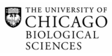 Go to The University of Chicago profile