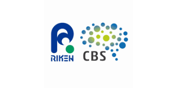 Go to RIKEN Center for Brain Science profile