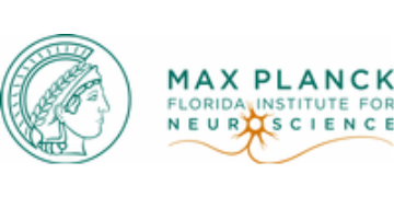 Go to Max Planck Florida Institute for Neuroscience profile