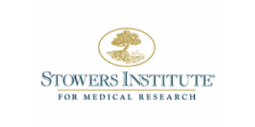 Go to Stowers Institute for Medical Research profile